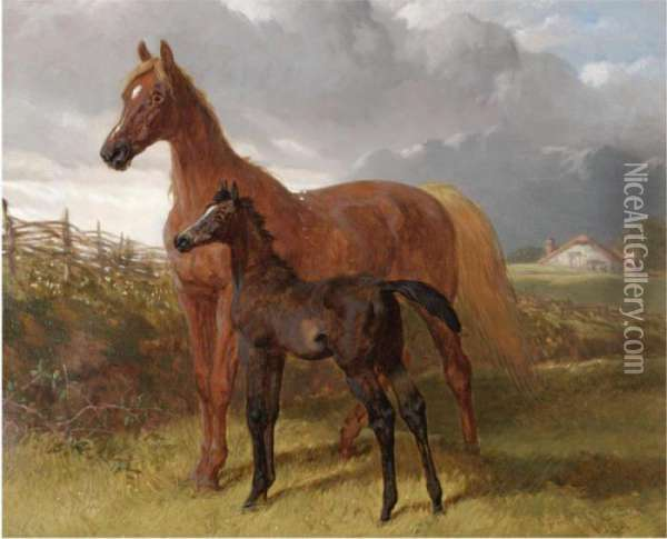 A Chestnut Mare And Foal In A Field Oil Painting - John Frederick Herring Snr