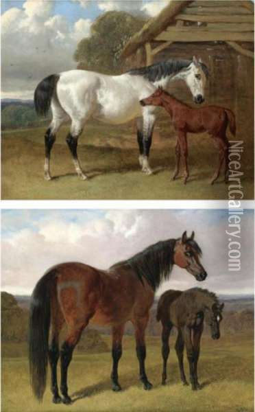 A Mare And Foal Beside A Stable; A Mare And Foal In A Landscape Oil Painting - John Frederick Herring Snr