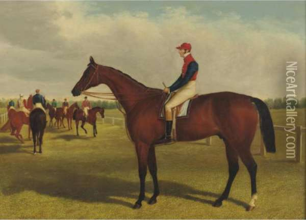 Property From A Private Collection              Don John, Winner Of The St. Leger, 1838 And The St. Leger, 1839 Oil Painting - John Frederick Herring Snr
