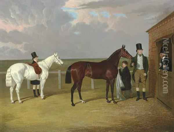 Vespa, A Brown Filly Oil Painting - John Frederick Herring Snr