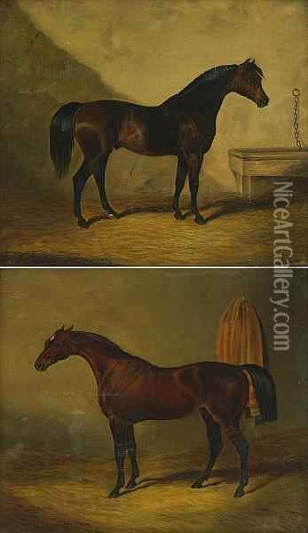 A Bay Stallion In A Stall; Also A Companion Painting (a Pair) Oil Painting - John Frederick Herring Snr