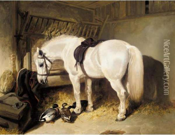 A Grey Pony In A Stable With Some Ducks Oil Painting - John Frederick Herring Snr