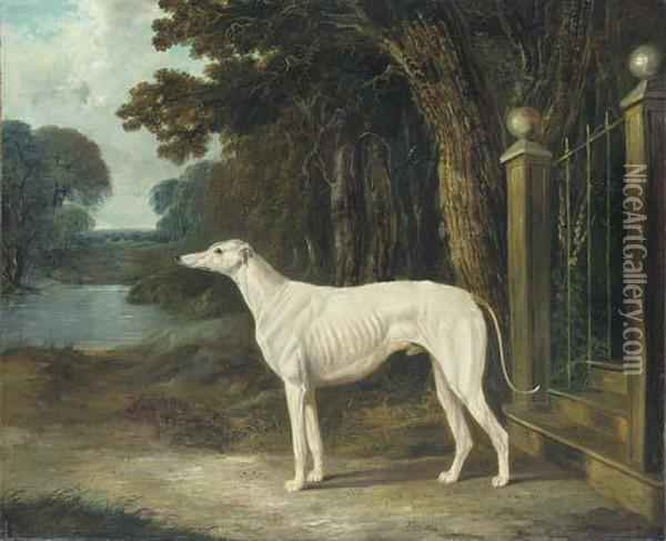 Vandeau, A Greyhound Outside The Steps Of A Country House Oil Painting - John Frederick Herring Snr