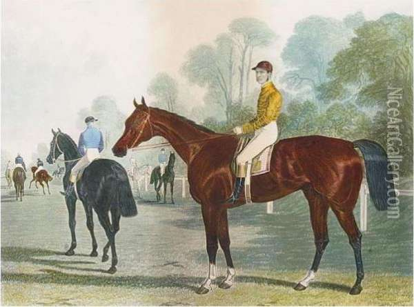 Cremorne, Winner Of The Derby  Stakes At Epsom And The Fourteenth Biennial Stakes At Epsom, 1872 Oil Painting - John Frederick Herring Snr