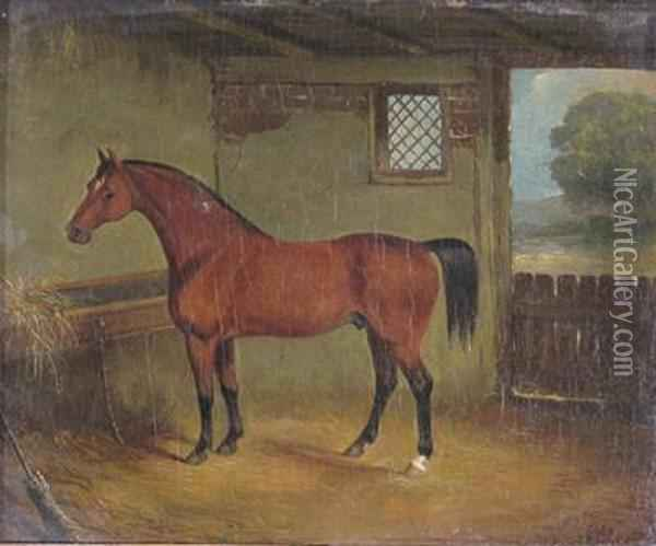 A Bay Horse In A Stable Oil Painting - John Frederick Herring Snr