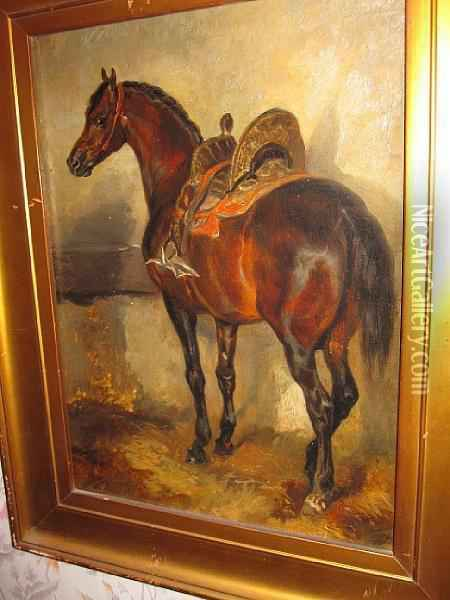 A Study Of A Horse With A Spainishsaddle Oil Painting - John Frederick Herring Snr