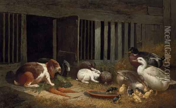 Rabbits And Ducks In A Hutch Oil Painting - John Frederick Herring Snr