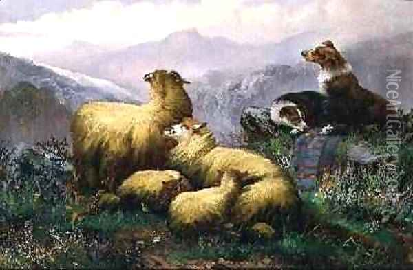 Sheep Dogs and Sheep in the Scottish Highlands Oil Painting - J.W. Morris