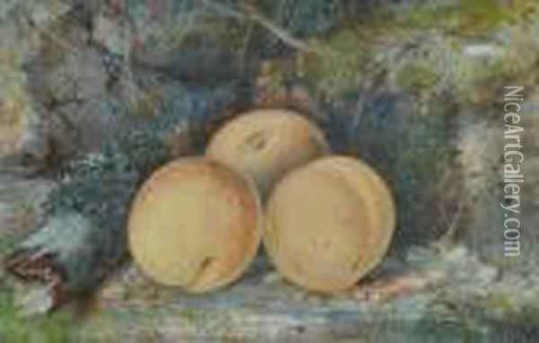 Still Life Study Peaches On A Mossy Bank Oil Painting - William Henry Hunt