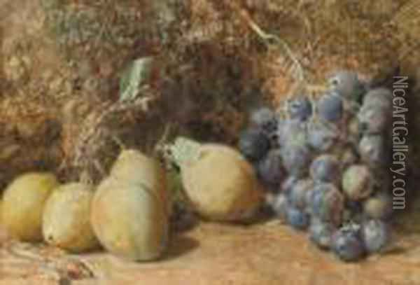 Still Life Of Plums, Grapes And Rosehips On A Mossy Bank Oil Painting - William Henry Hunt