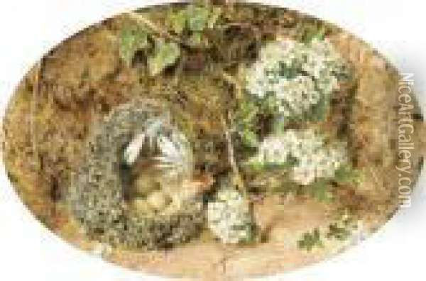Still-life With Birds Nest And Hawthorne On A Mossy Bank Oil Painting - William Henry Hunt