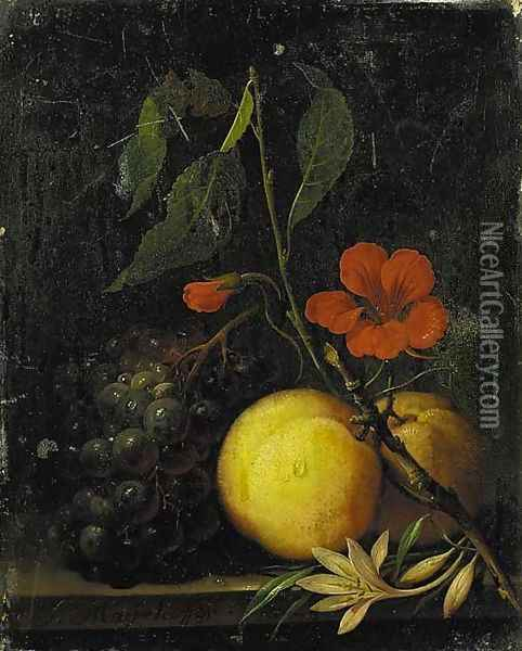 Grapes, peaches and a nasturtium, with a moth on a ledge Oil Painting - Johann Nepomuk Mayerhofer