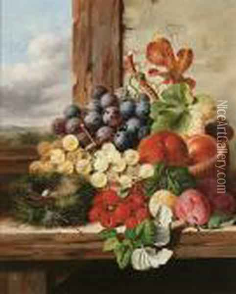 Still Life With Fruit And A Bird's Nest On A Ledge Oil Painting - Edward Ladell
