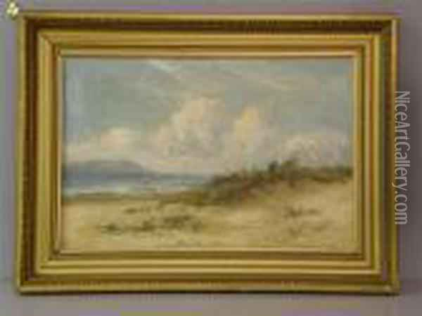 Viewacross A Bay With Dunes In The Foreground And Sea-gulls Oil Painting - William Langley