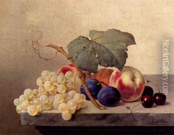 Still Life With Grapes, Peaches, Plums And Cherries Oil Painting - Emilie Preyer