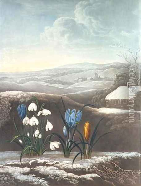 The Snowdrop, engraved by Ward, probably early 19th century Oil Painting - Abraham Pether