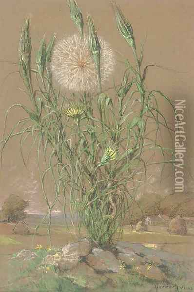 Study of a dandelion Oil Painting - Pierre Ernest Prins