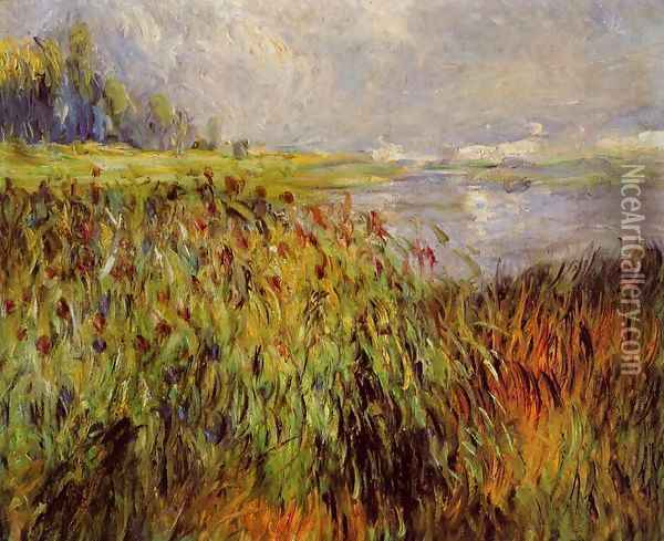 Bulrushes On The Banks Of The Seine Oil Painting - Pierre Auguste Renoir