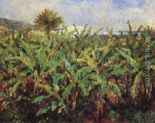 Field Of Banana Trees Oil Painting - Pierre Auguste Renoir