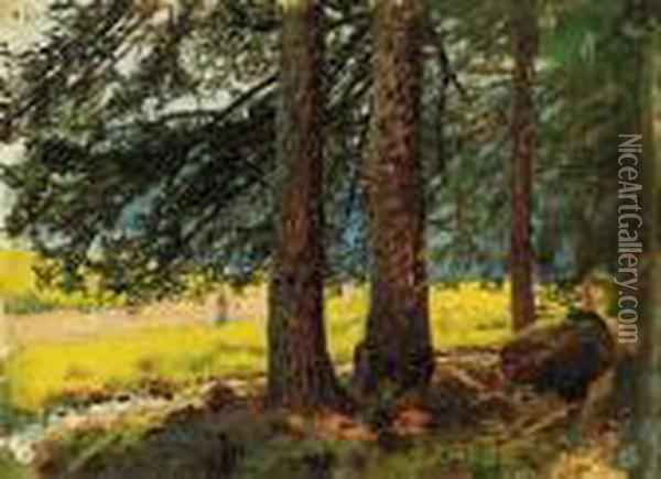Forest With Sunlit Clearing Oil Painting - Laszlo Mednyanszky