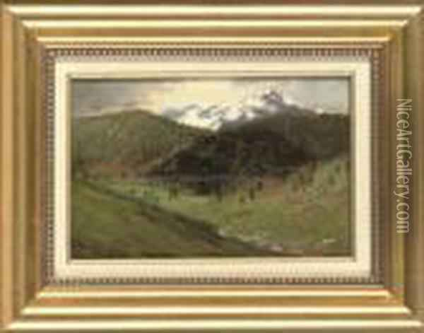 A View Accross The Valley Oil Painting - Laszlo Mednyanszky