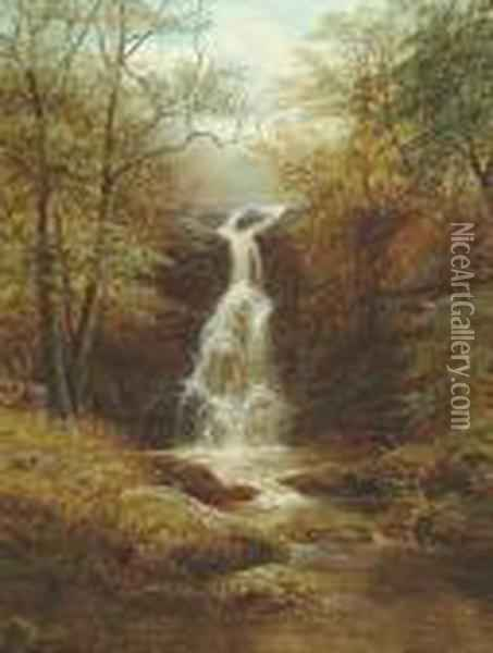 Fall, Bolton Park, Bolton Woods, Yorkshire Oil Painting - William Mellor