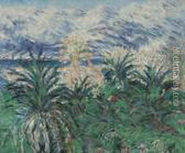 Palm Trees At Bordighera Oil Painting - Claude Oscar Monet