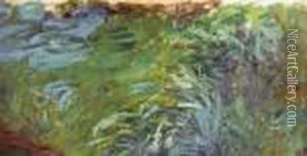Herbes Aquatiques Oil Painting - Claude Oscar Monet