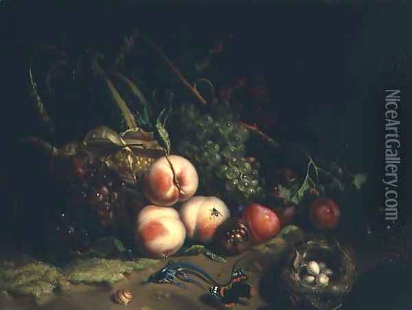 Still life with fruit Oil Painting - Rachel Ruysch