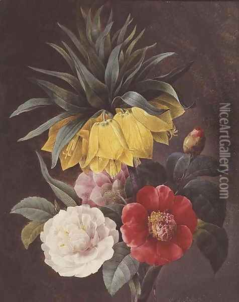 Exotic Flowers Oil Painting - Pierre-Joseph Redoute