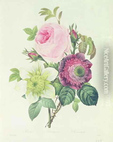 Rose, anemone and Clematide Oil Painting - Pierre-Joseph Redoute