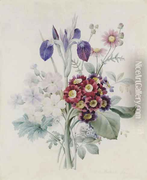 A bunch of flowers with a blue iris and some red auriculae Oil Painting - Pierre-Joseph Redoute