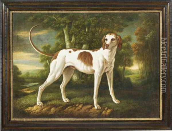 A French Hunting Dog In A Wooded River Landscape Oil Painting - Jean-Baptiste Oudry