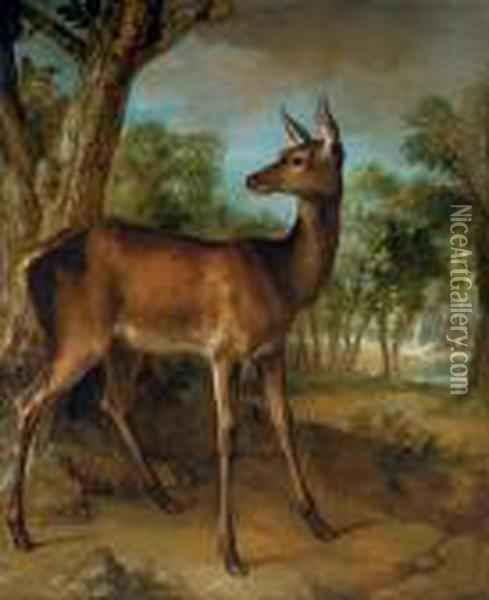 The Watchful Doe ('biche Aux Augets') Oil Painting - Jean-Baptiste Oudry