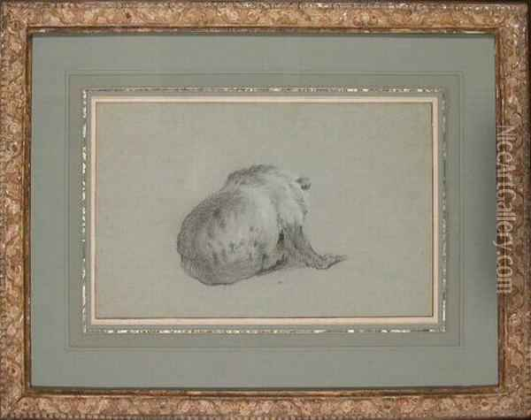 View Of A Bear From Behind Oil Painting - Jean-Baptiste Oudry
