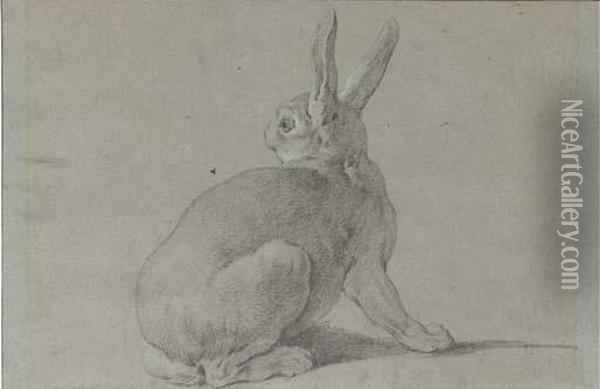 A Hare Looking Back To The Left Oil Painting - Jean-Baptiste Oudry