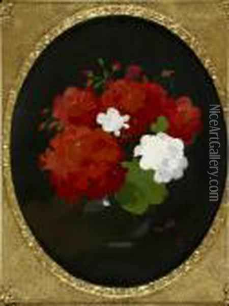 A Still Life Of Red And White Geraniums Oil Painting - James Stuart Park