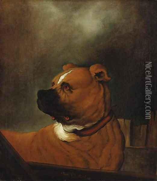 A mastiff standing in a stall Oil Painting - Johann Heinrich Roos