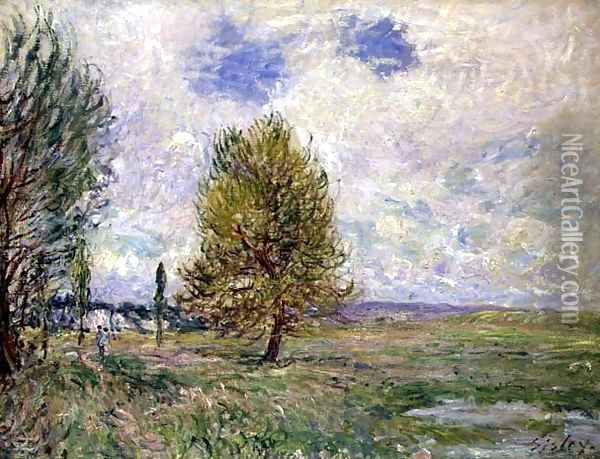 Plain at Veneux Oil Painting - Alfred Sisley