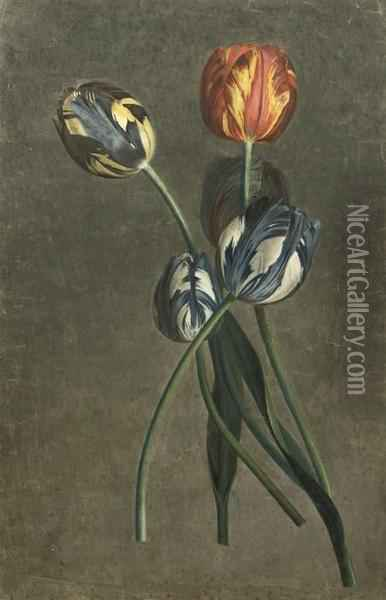 Parrot Tulips Oil Painting - Pierre-Joseph Redoute