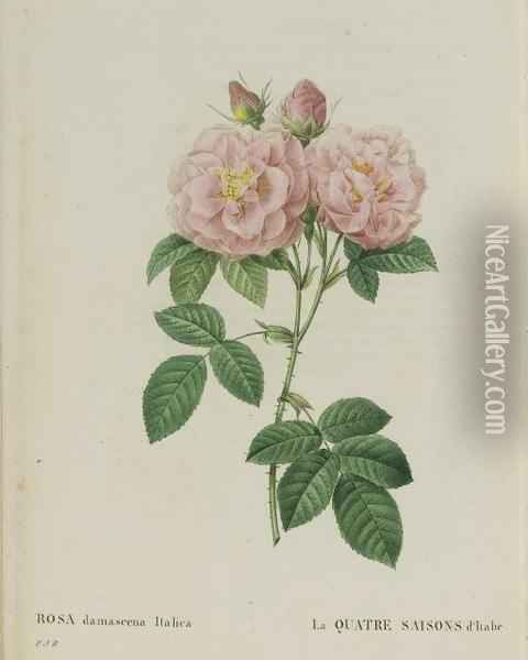 Les Roses Oil Painting - Pierre-Joseph Redoute