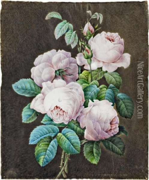 Bouquet De Roses [follower Of 