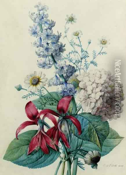 Hydrangea, Hyacinths, Saint-jacques Lilies And Daisies Oil Painting - Pierre-Joseph Redoute