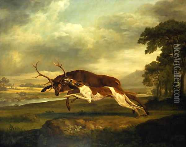 A Hound attacking a stag Oil Painting - George Stubbs