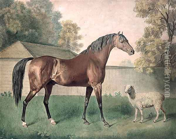 Dungannon Oil Painting - George Stubbs
