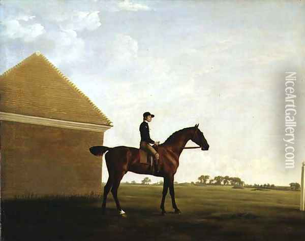 Turf, c.1765 Oil Painting - George Stubbs