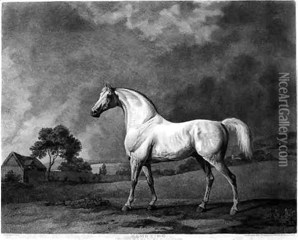 Mambrino, engraved by George Townley Stubbs 1756-1815 pub. 1794 Oil Painting - George Stubbs