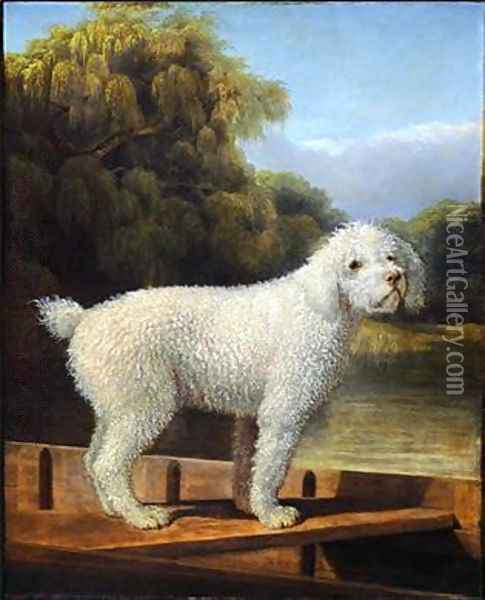 White Poodle in a Punt Oil Painting - George Stubbs