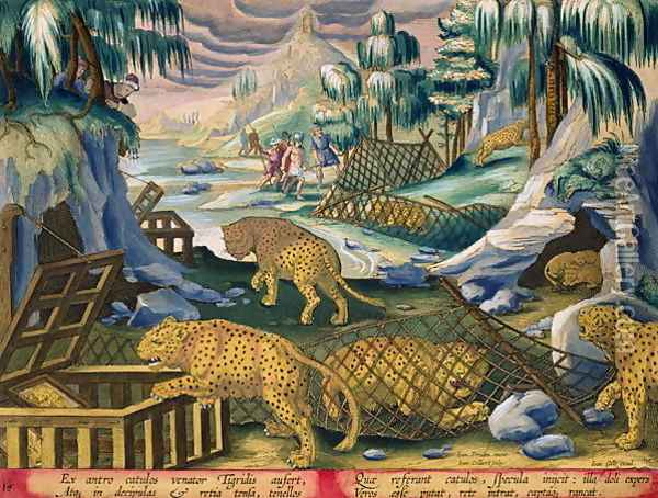 Capturing Leopards with the Help of Nets and Cages Baited with Mirrors, plate 15 from Venationes Ferarum, Avium, Piscium Of Hunting Wild Beasts, Birds, Fish engraved by Jan Collaert 1566-1628 published by Phillipus Gallaeus of Amsterdam Oil Painting - Giovanni Stradano