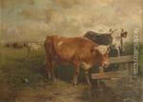 Cattle In A Pasture Oil Painting - Henry Schouten
